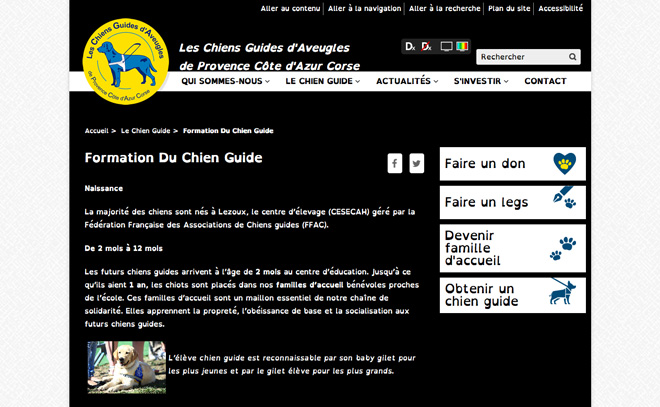 Chiens guides d aveugles - Chiens guides d'aveugles - Agence - Refonte du site internet chiensguides.org